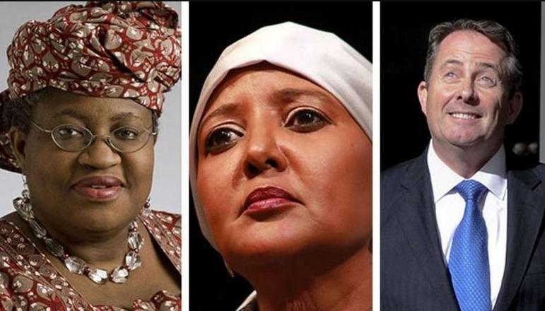 WTO Leadership Contenders