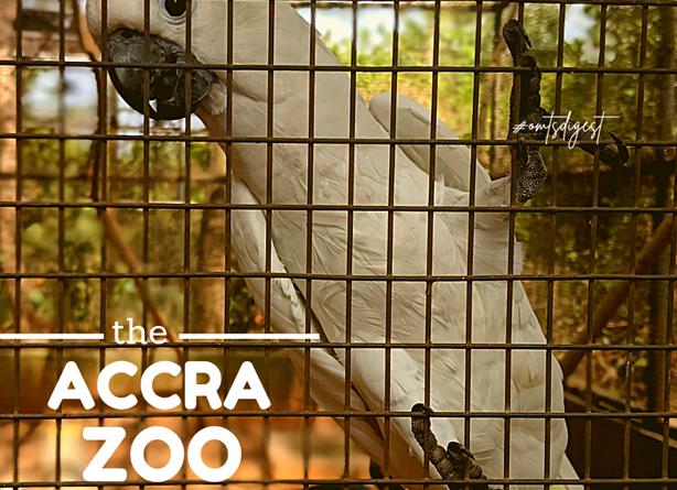 Accra Zoo